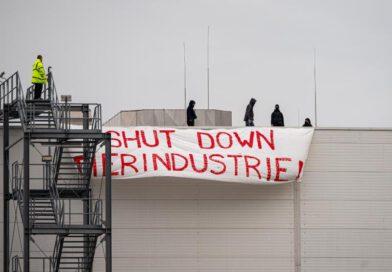 Protest bei Tönnies: «Shut Down Tierindustrie»