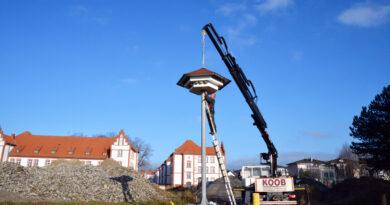 Paderborn: Mehlschwalben haben ab sofort ein neues Heim