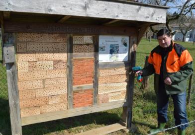 Lemgo: Wildbienenwand an der Streuobstwiese saniert