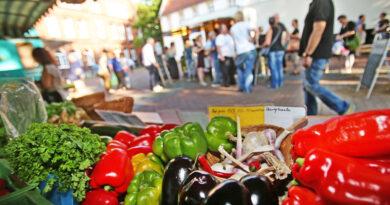 Sommer ohne Abendmarkt und Sparrenburgfest